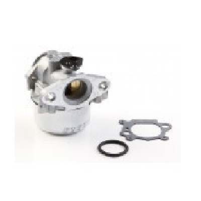 799868 briggs and stratton carburetor for Briggs and stratton outboard motor dealers