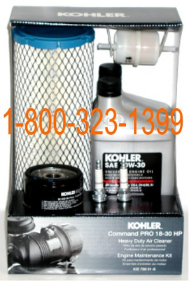 25-789-01-s Kohler Maintenance Kit