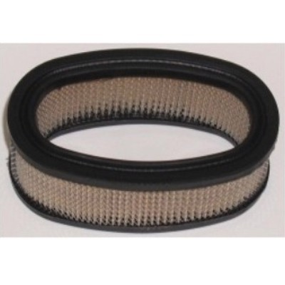 Briggs & Stratton Air Filter 393406