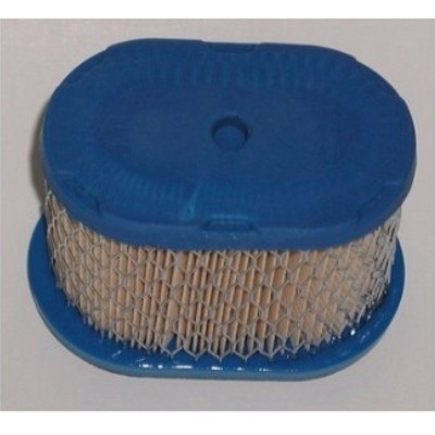 Briggs & Stratton Air Filter 697029