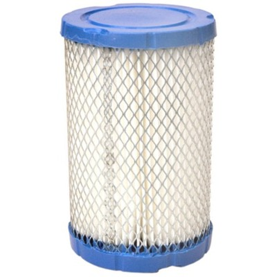 796031 Air Filter Replaces BRIGGS & STRATTON 13644
