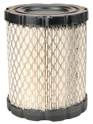 798897 Briggs & Stratton Air Filter