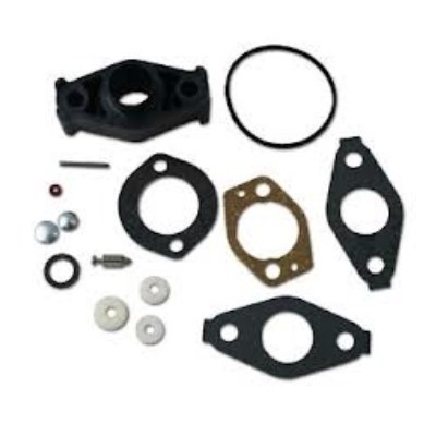 695157 Carburetor-Kit Briggs & Stratton